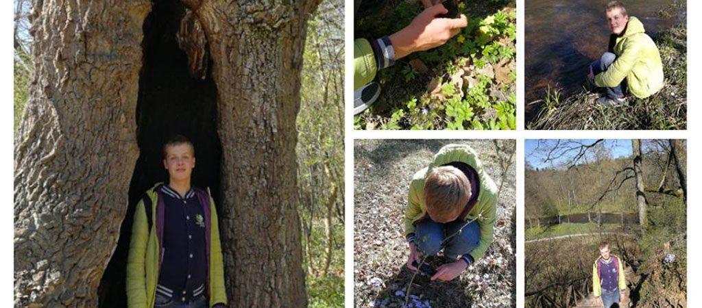 VGTU inžinerijos licėjaus septintokui Augustui patinka stebėti ir tyrinėti gamtą