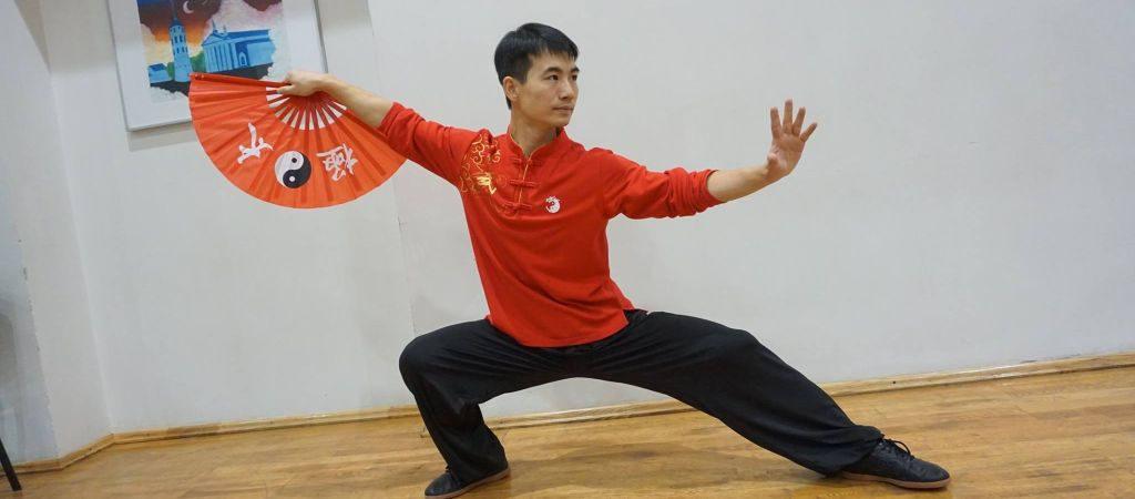 Kung Fu pamoka VGTU inžinerijos licėjuje