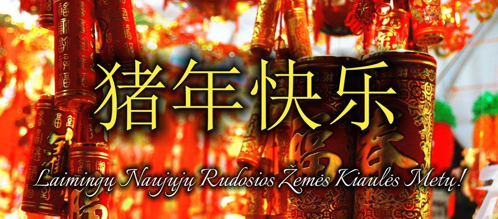 VGTU inžinerijos licėjuje pasitikti artėjantys kinų Naujieji metai!