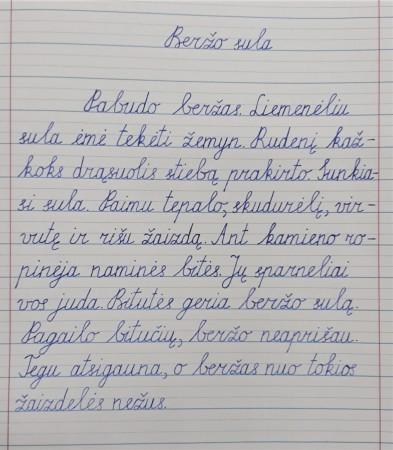 Brigita Sulimovė 2b