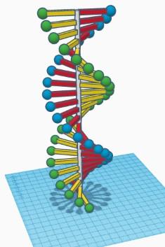 Dorotėjos DNR